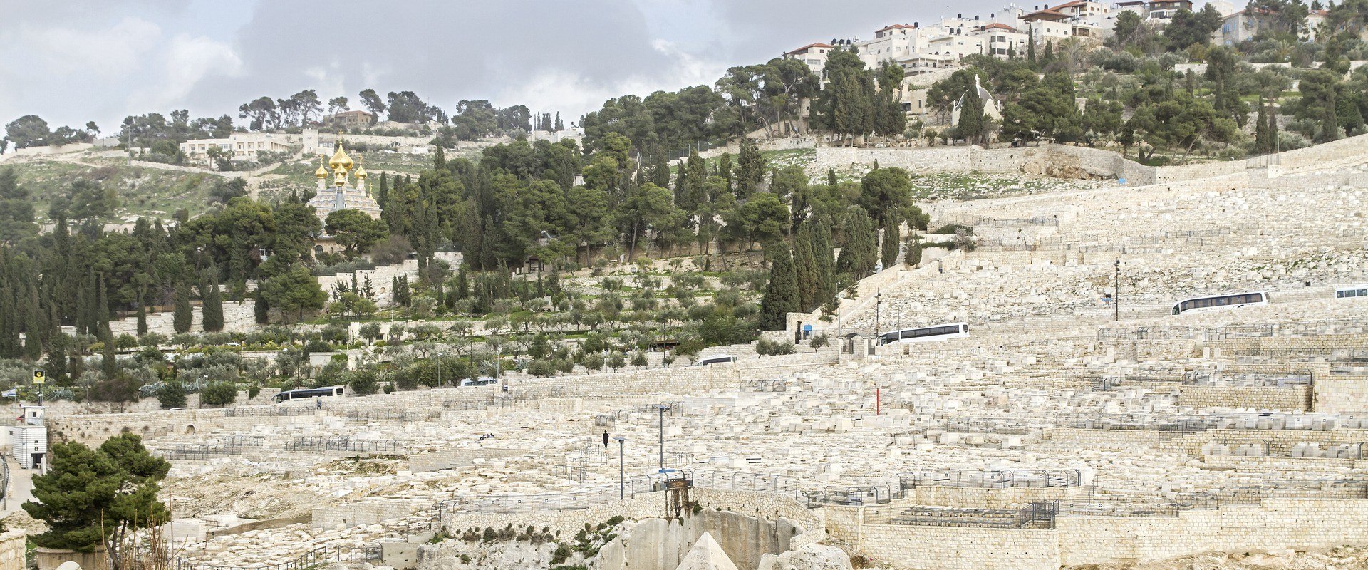 Mount Olives Tour | Visit Jerusalem and Mount Olives