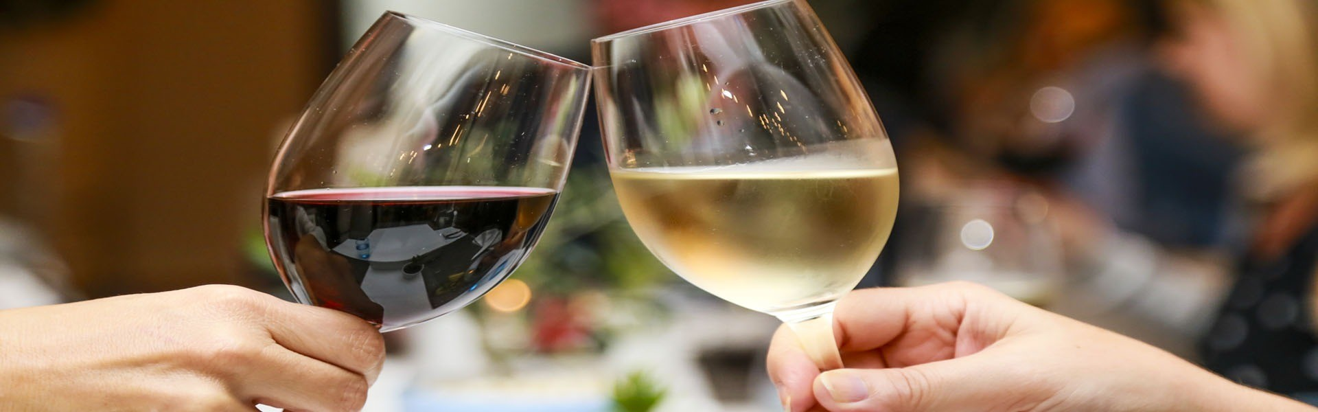 Wine tour in Israel and Palestine